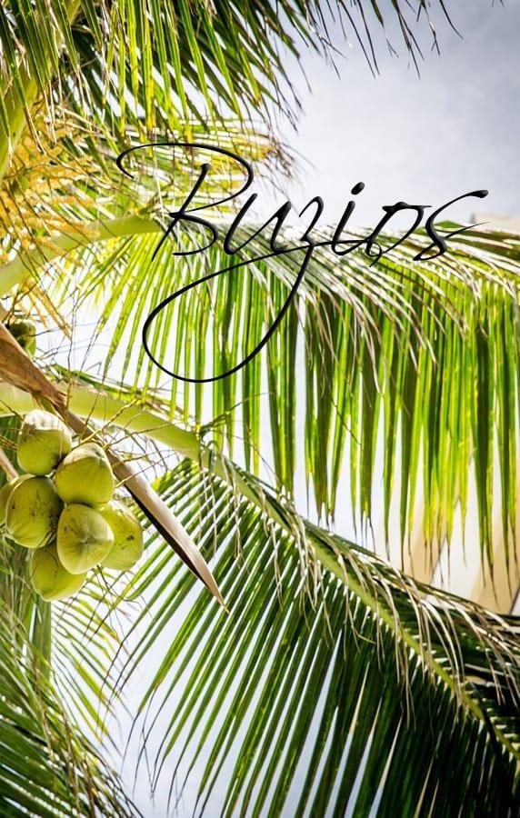 buzios garden pousada, Buzios clima, Buzios playas 2020, Buzios mapa, Buzios paquetes, Buzios centro, Buzios Brasil playas, Buzios excursiones, Buzios Brasil que hacer, rio buzios beach, posadas en buzios, windguru buzios, privilege buzios, Jogo de buzios, Que hacer en Buzios, Los Hoteles y Posadas más Importantes en Buzios, Buzios Excursiones, Atracciones y Actividades, reveillón buzios, de fiesta en america, vacaciones en familia