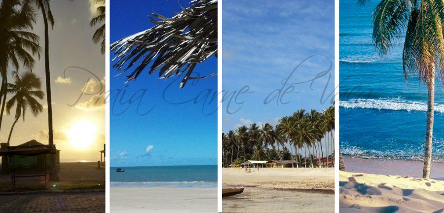 Playas de Pernambuco Praia Carne de Vaca, mejores playas del norte de brasil, playas de pernambuco