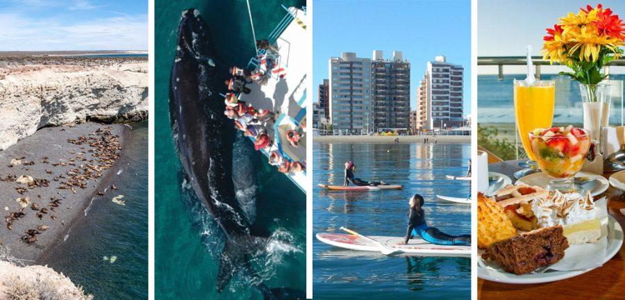 que hacer en puerto madryn, puerto madryn clima, puerto madryn hoteles, puerto madryn turismo, puerto madryn ballenas
