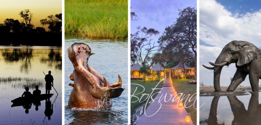 quiero viajar solo donde voy, viajar solo 2020, viajar solo india, viajar solo marruecos, viajar solo en moto, viajar solo botswana,