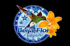 Escudo Beija Flor