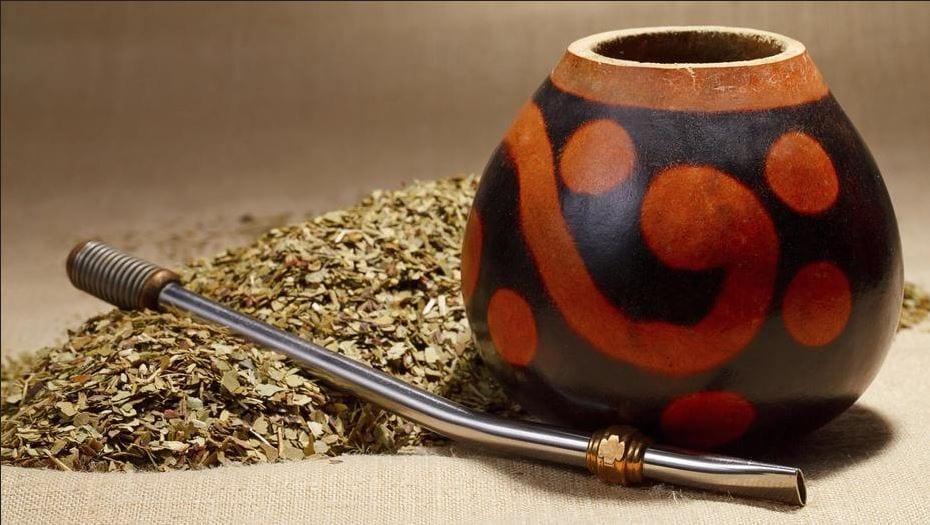 yerba mate, mate cocido, mate tea, planta de yerba, yerbal, el mejor mate, preparar mate