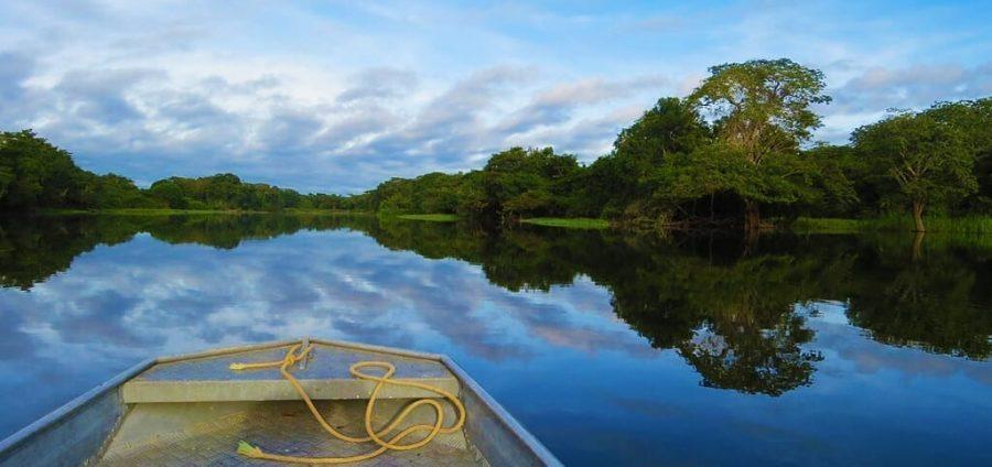Caminata por la selva amazónica, de fiesta en america, Destinos del Amazonas, Turismo Amazonas, Río Ucayali, Ro Amazonas, Amazonas Selva y Fauna, Cuenca del Amazonas Brasil, Mapa del Amazonas, Que es el Amazonas, Viajar a las Amazonas, Amazonas Selva y Turismo 2019