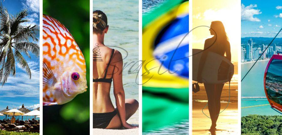 vacaciones en familia, de fiesta en america, Brasil playas, Lopes Mendes, Ilha Grande, Moreré, Ilha de Boipeba, Patacho, São Miguel dos Milagres, Praia do Espelho, Baía dos Porcos, Fernando de Noronha, Bonete, Ilhabela, Lagoinha do Leste,