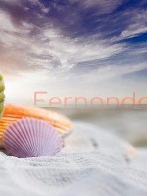 Qué hacer en Fernando de Noronha: Consejos para tu Viaje al Paraíso!