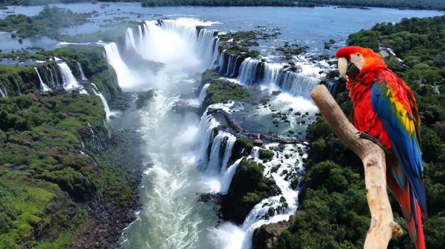 que hacer en foz de iguazu, Foz do Iguaçu, o que fazer em Foz do Iguaçu, cataratas del iguazu, iguazu, como llegar a iguazu clima en foz de iguazu, vacaciones en familia, de fiesta en america