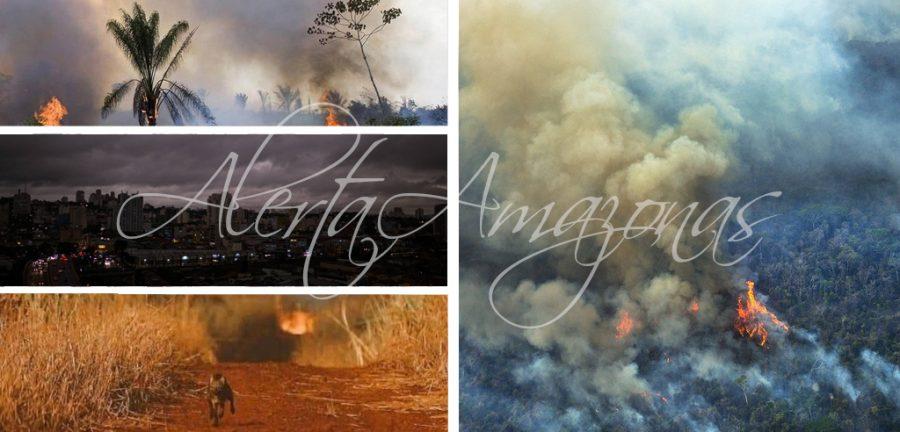 incendios en el Amazonas, alerta amazonas, incendio en brasil, fotos amazonas