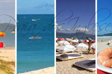 praia dos ingleses, departamentos en praia dos ingleses, praia de los ingleses florianopolis, praia dos ingleses hotel, geranius praia dos ingleses, praia dos ingleses alojamiento, vacaciones en familia
