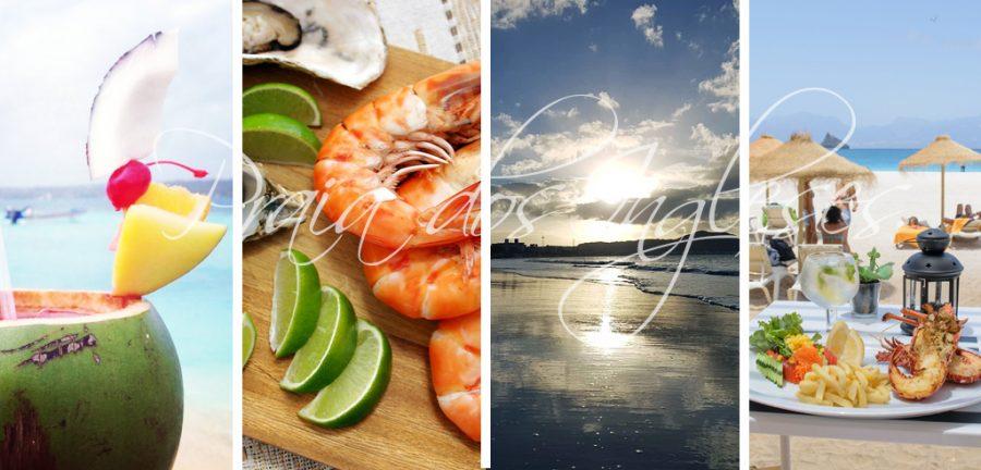 praia de los ingleses, florianopolis, praia do santinho, jurere, canasvieiras, praia dos ingleses mapa, praia dos ingleses centro, aqua park brasil