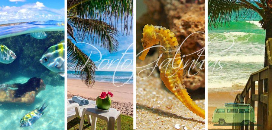 playa de galinhas brasil, porto de galinhas, porto galinhas, 10 mejores playas de brasil, playas de brasil ideales para ir con niños, playas de brasil para ir con niños, playas de brasil lindas y baratas