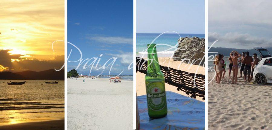 praia do forte florianopolis Brasil, como llegar praia do forte, praia do forte eco resort, praia do forte hostel, praia do forte iberostar bahia hotel brasil, vacaciones en familia, praia do forte de salvador bahía